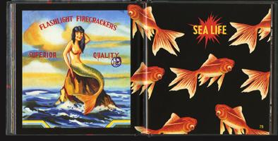 Firecrackers 4